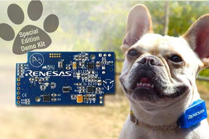 11_RENESAS_PETAcitivtyTracker_720x480px